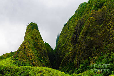 Photograph - Overview Of The Iao Needle State Park Maui Hawaii Usa by Don Landwehrle