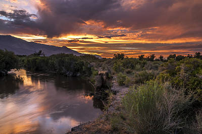Photograph - Owens River Sunset by Cat Connor