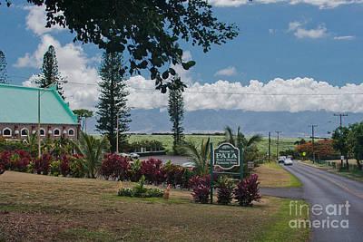 Food And Flowers Still Life - Paia Maui Hawaii by Sharon Mau