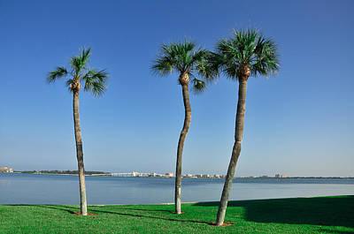Florida Bridge Digital Art - 3 Palm Trees And The Sand Key Bridge by Bill Cannon
