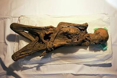 Peruvian Mummy Art Print by Marco Ansaloni / Science Photo Library