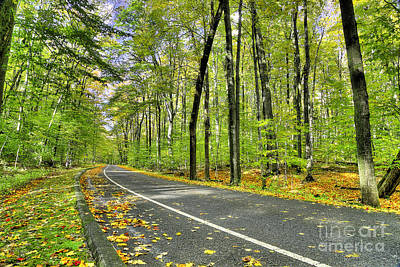 Pierce Stocking Scenic Drive In Fall Art Print by Twenty Two North Photography