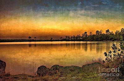 Art Print featuring the photograph Pine Glades Lake by Anne Rodkin