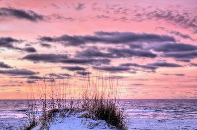 Navarre Photograph - Pink by JC Findley
