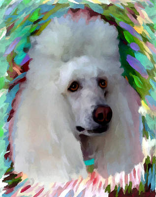 Standard Poodle Painting - Poodle by Char Swift