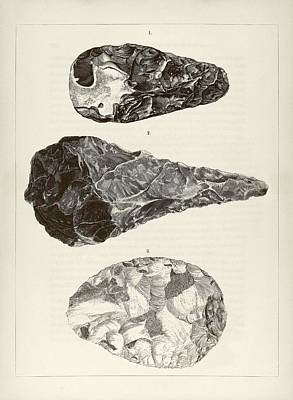 Miscellaneous Photograph - Prehistoric Stone Tools by Middle Temple Library