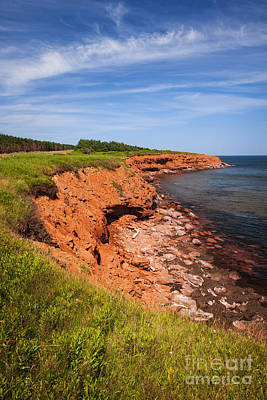 Photograph - Prince Edward Island Coastline by Elena Elisseeva