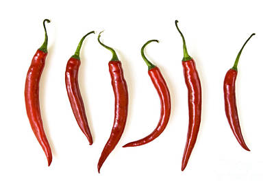 Several Photograph - Red Hot Chili Peppers by Elena Elisseeva