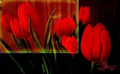 Photograph - Red Tulips by Jim Vance