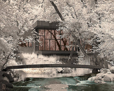 Infrared Photograph - Reflections by Zygmund Zee