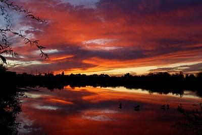 Photograph - Riparian Sunset by Tam Ryan