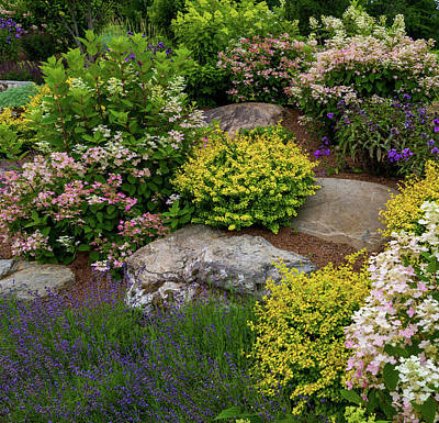 Rock Garden Photograph - Rocks And Plants In Rock Garden by Panoramic Images
