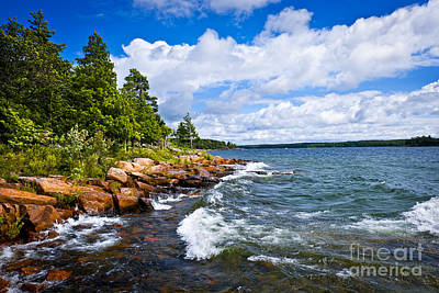 Spectacular Photograph - Rocky Shore Of Georgian Bay by Elena Elisseeva