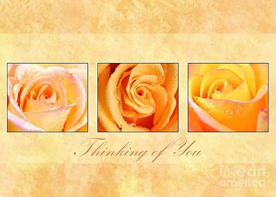 Digital Art - 3 Rose Thinking Of You by JH Designs