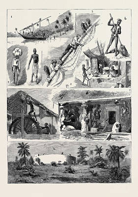 Lateen Drawing - Round The World Yachting In The Ceylon by English School