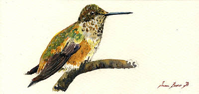 Rufous Wall Art - Painting - Rufous Hummingbird by Juan  Bosco