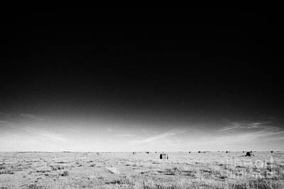 rural prairie grassland open fields bengough Saskatchewan Canada Art Print by Joe Fox
