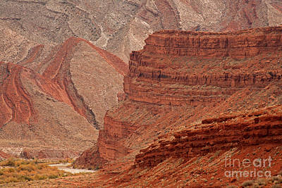 Photograph - San Juan River by Fred Stearns