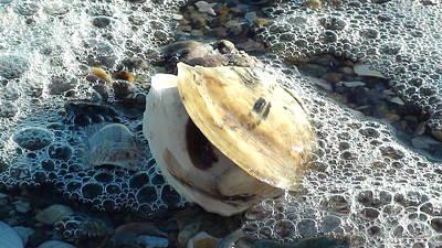 Sandy Sells Sea Shells Original