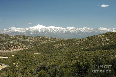 611p Schell Creek Range Nv Art Print