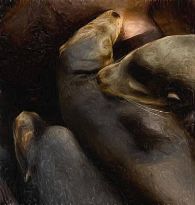 Companions Digital Art - 3 Sea Lions by Jack Zulli