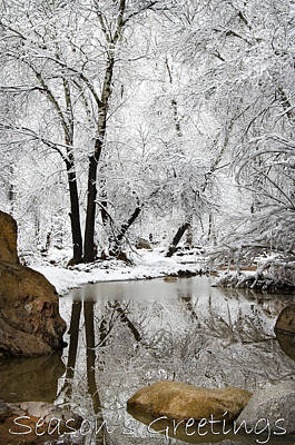 Photograph - Season's Greetings by Saija  Lehtonen