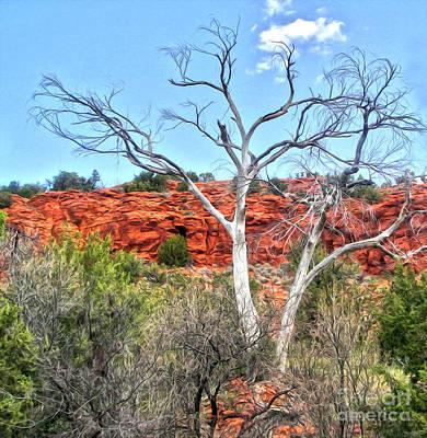 Sedona Arizona Dead Tree Art Print by Gregory Dyer