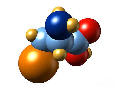 Selenocysteine, Molecular Model Art Print by Dr. Mark J. Winter