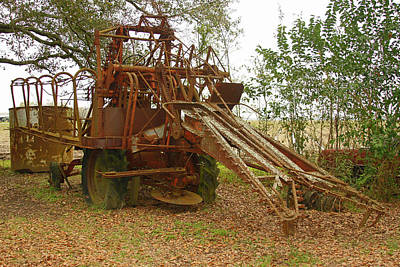 Photograph - Single Row Sugarcane Harvester by Ronald Olivier