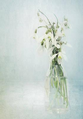 Flower Still Life Mixed Media - Snowdrops Stilllife by Heike Hultsch