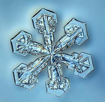 Stellar Photograph - Snowflake Crystal by Gerd Guenther