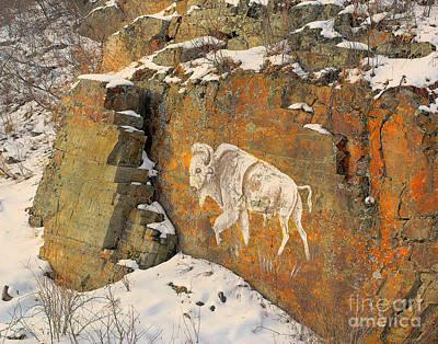 Spirit Buffalo Art Print by Virgil Hawkinson