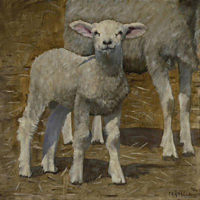 Art Print featuring the painting Spring Lamb by John Reynolds
