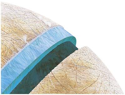 Structure Of Europa, Artwork Print by Gary Hincks
