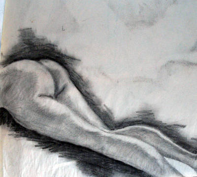 Drawing - Study by Corina Bishop