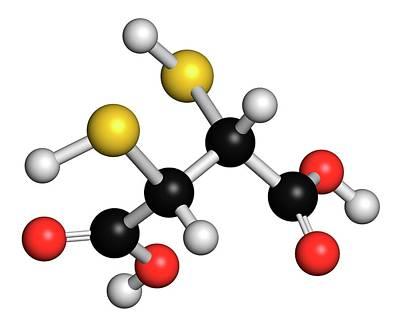 Succimer Acid Molecule Art Print