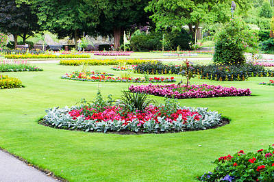 Royalty-Free and Rights-Managed Images - Summer garden by Tom Gowanlock