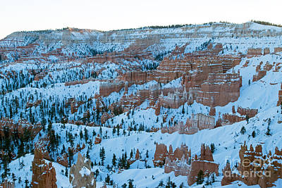 Photograph - Sunrise Point Bryce Canyon National Park by Fred Stearns