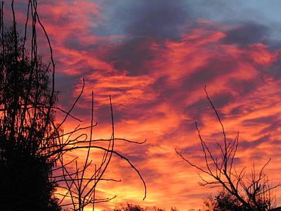 Sunset Skys Art Print by Joyce Woodhouse