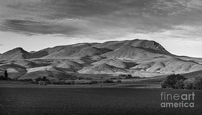 Photograph - The Butte by Robert Bales