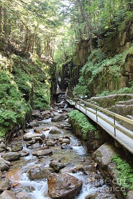 Photograph - The Flume Gorge   by Jeffery Akerson
