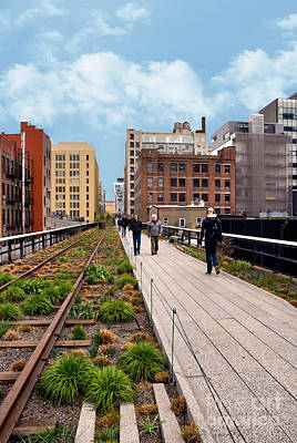 The High Line Urban Park New York Citiy Art Print by Amy Cicconi