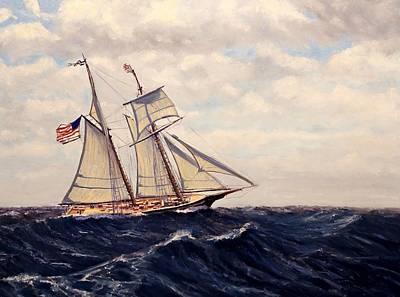 The Lynx Schooner Original