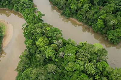 Amazon River Photograph - Tiputini River And Rainforest, Yasuni by Pete Oxford