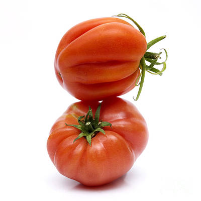 Tomatoes Art Print by Bernard Jaubert