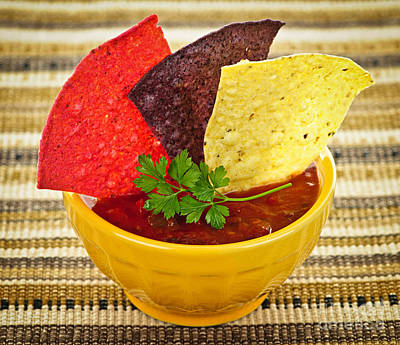 Tortilla Chips And Salsa Art Print by Elena Elisseeva