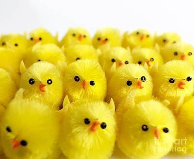 Toy Chicks Art Print by Tek Image
