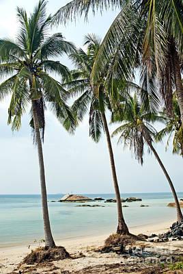 Shark Art - Tropical Exotic Beach Near Phuket Thailand by JM Travel Photography