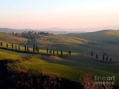 Tuscan Countryside Print by Tim Holt