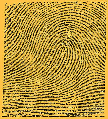 Typical Loop Pattern, 1900 Art Print